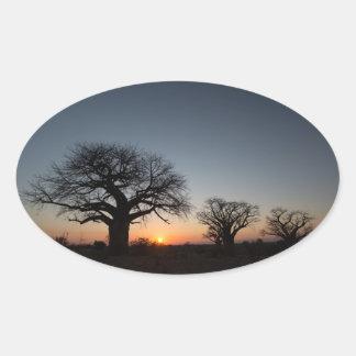 Sacred Baobabs Oval Sticker