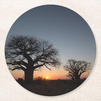 Sacred Baobabs Round Paper Coaster