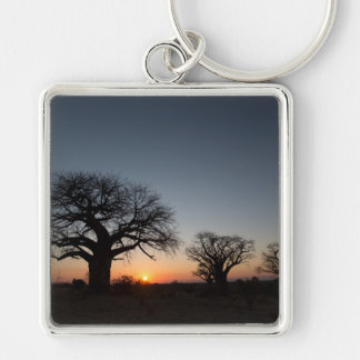 Sacred Baobabs Silver-Colored Square Key Ring