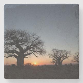 Sacred Baobabs Stone Coaster