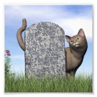 Sad cat near tombstone photo print