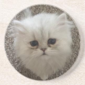 Sad eyes white fluffy kitten looking up coaster