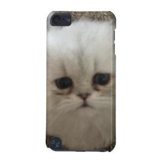 Sad eyes white fluffy kitten looking up iPod touch (5th generation) case