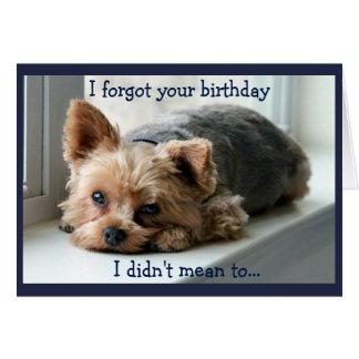 Sad Yorkie Belated Birthday Card
