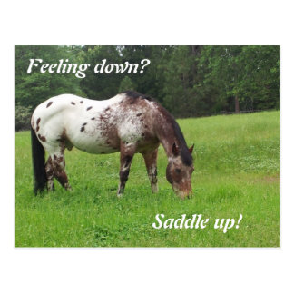 Saddle Up Horse Postcard
