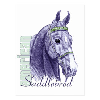 Saddlebred Head Study, Blue Postcard
