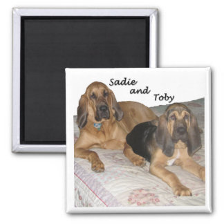 Sadie and Toby 1 Magnet
