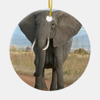 Safari African Jungle Destiny Animals Elephants Round Ceramic Decoration