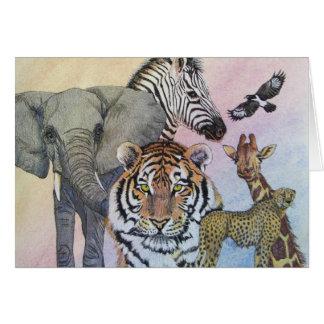 Safari Sampler Card