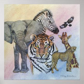 Safari Sampler Poster