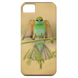 Safe Place iPhone 5 Cases