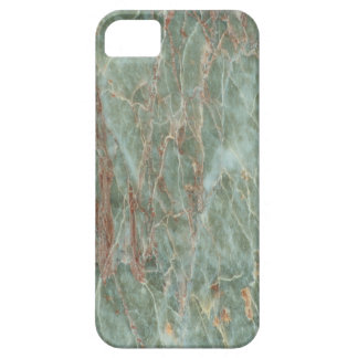 Sage and Rust Marble iPhone 5 Cover
