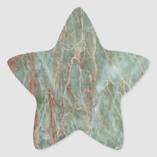 Sage and Rust Marble Star Sticker
