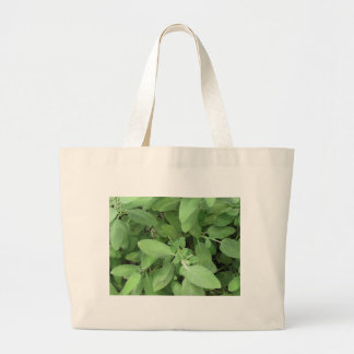 Sage plant in the garden. Tuscany, Italy Large Tote Bag