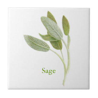 Sage - Small Ceramic Tile