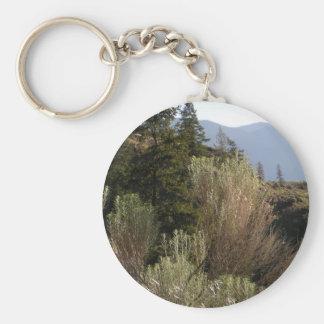 Sagebrush and mountains key ring