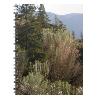 Sagebrush and mountains notebooks