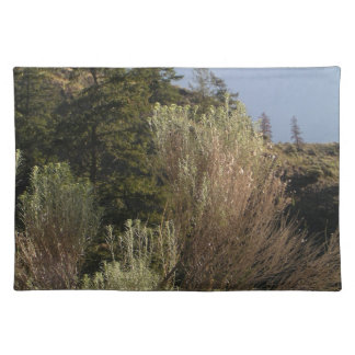Sagebrush and mountains placemat