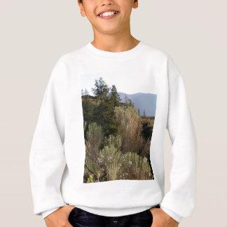 Sagebrush and mountains sweatshirt