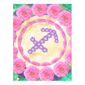 SAGITTARIUS   -  Zodiac  Shining STAR Postcard