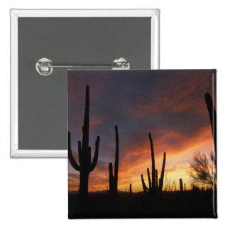 saguaro cacti Carnegiea gigantea after Pinback Button