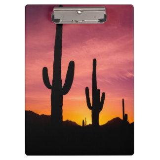 Saguaro cactus at sunrise, Arizona Clipboard
