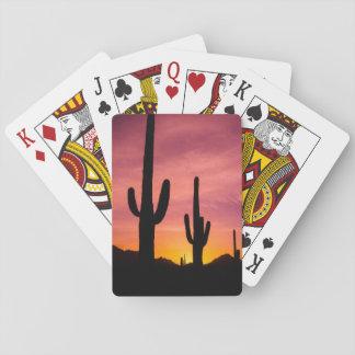 Saguaro cactus at sunrise, Arizona Poker Deck