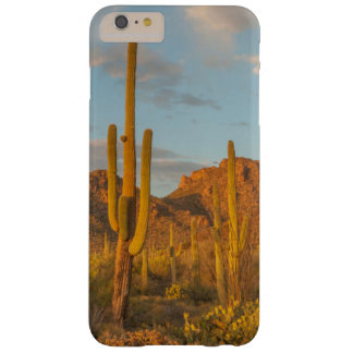 Saguaro cactus at sunset, Arizona Barely There iPhone 6 Plus Case