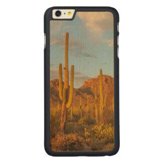 Saguaro cactus at sunset, Arizona Carved® Maple iPhone 6 Plus Case