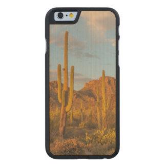 Saguaro cactus at sunset, Arizona Carved® Maple iPhone 6 Slim Case