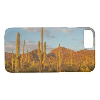Saguaro cactus at sunset, Arizona iPhone 7 Case