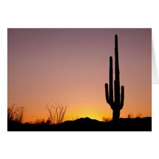 Saguaro Cactus at Sunset Card