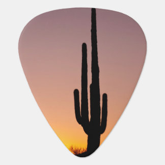 Saguaro Cactus at Sunset Plectrum