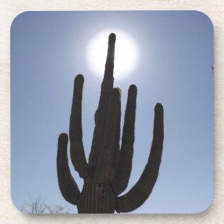 saguaro cactus with sun backdrop coaster