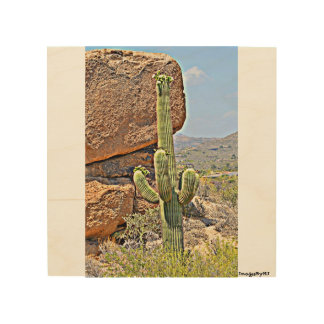 """""""Saguaro in the Boulders"""" Wood Wall Art. Wood Canvases"""
