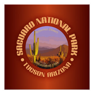 Saguaro National Park (C) Poster