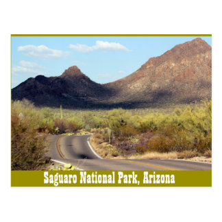 Saguaro National Park, Tuscon Arizona Postcard