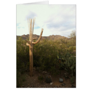 Saguaro Skeleton Blank Note Card
