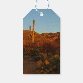Saguaro Sunset I Arizona Desert Landscape
