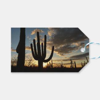 Saguaro Sunset II Arizona Desert Landscape