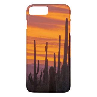 Saguaro, sunset, Saguaro National Park iPhone 7 Plus Case
