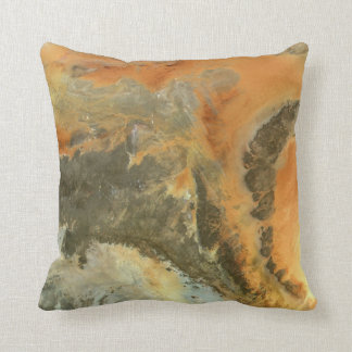 Sahara Desert Earth Tones Cushion