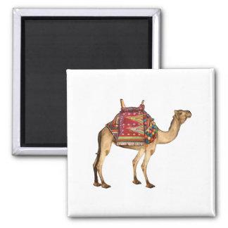 Saharan Taxi Magnet