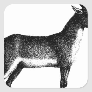 Saiga Antelope Square Sticker