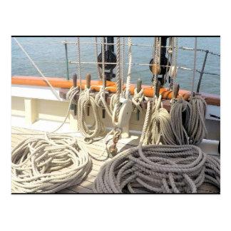Sailboat Lines Postcard