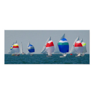 Sailboat races poster
