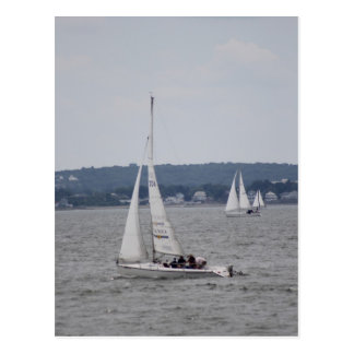 Sailboating Postcard