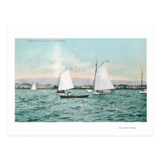Sailboats off Alameda BeachAlameda, CA Postcard