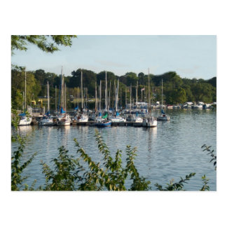 Sailboats on Lake Decatur Postcard