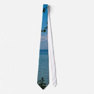Sailing At Mackinac Tie